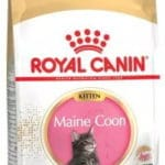 Royal Canin -Maine Coon Kitten Food