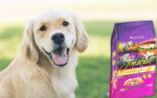 Zignature Zssential Formula Dog Dry Food