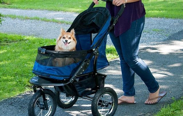Best Overall stroller